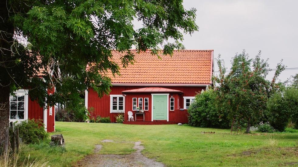 Stugan i Sparrsätraby utanför Enköping har renoverats grundligt. Till vänster syns ett ombyggt hönshus där dottern Juni bor.