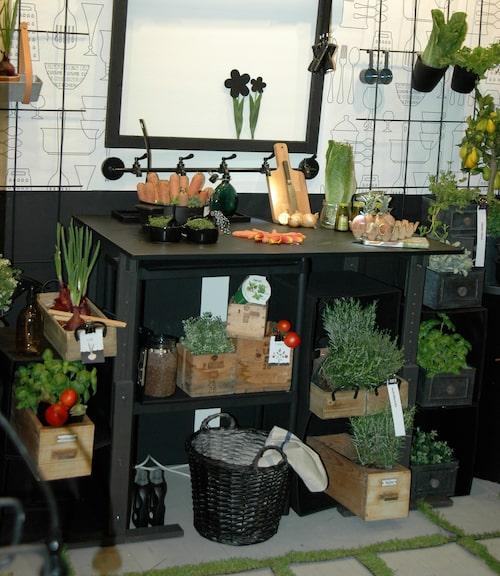 På balkongen Kökets trädgård har köket fått flytta ut på balkongen där det är nära till kryddväxter och sallad.