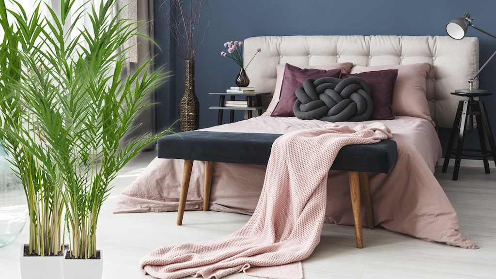 Den renar luften så det är bra att ställa den i sovrummet så sover du extra bra!