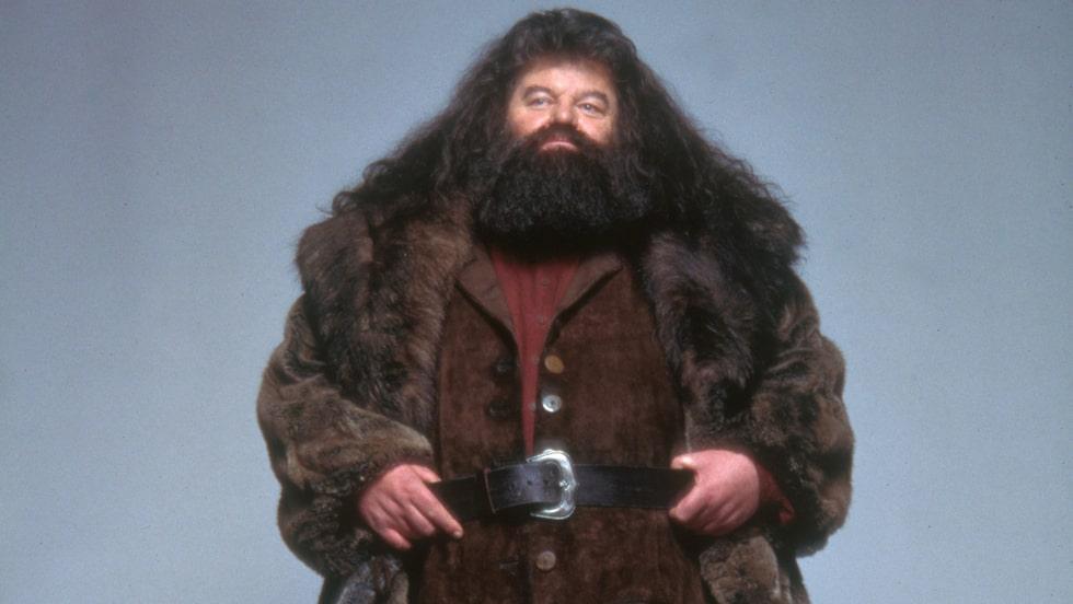 Hagrids megaskägg kanske skyddar mot ond magi också?