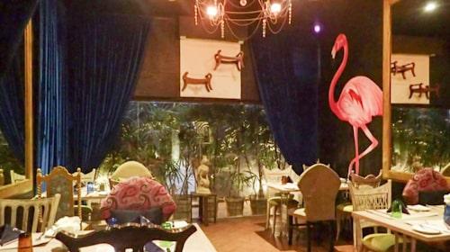 Flamingo House är fullt av – flamingos.