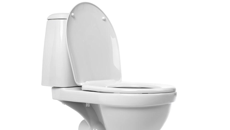 Lördag, den 19 november, är det världstoalettdagen, World Toilet Day.