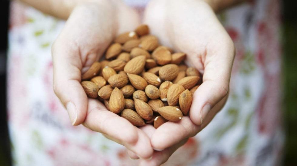 <p>Nio mandlar om dagen kan du äta.</p>