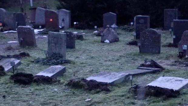 Gravstenar välta på Norra begravningsplatsen