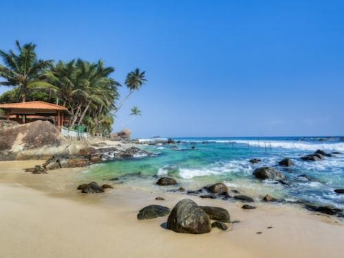 Många reser till Sri Lanka för stränderna.