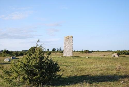 """""""Stenflisorna"""" vid Tingstads gravfält."""