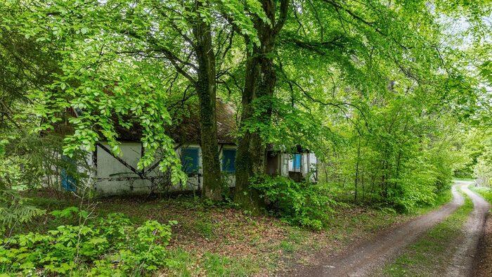 Huset ligger lite gömt från vägen sett bakom träd och buskage på den vildvuxna tomten.
