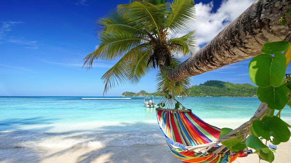 Drömresan går till Seychellerna.