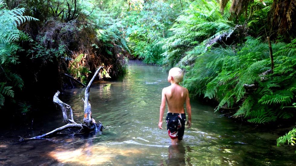 Nya Zeeland erbjuder njutning i det mest otippade. Som här, i en naturligt varm källa i Rotoruaområdet.