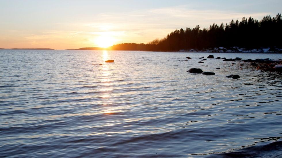 Riddersholmens Naturreservat bjuder allt som ofta på vackra vyer.