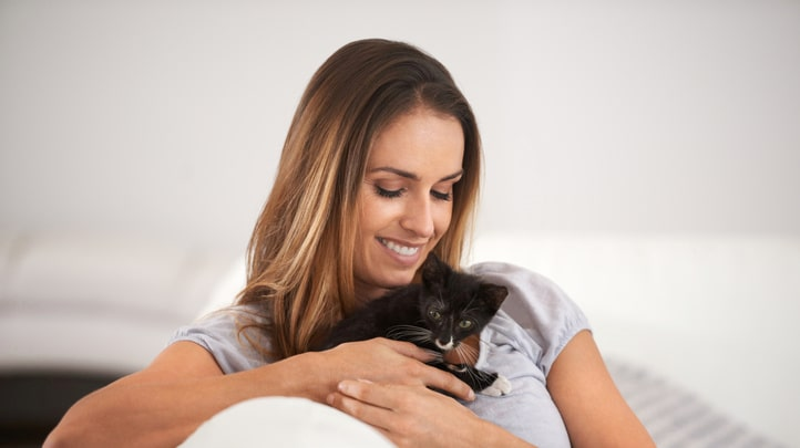 """Men med initiativet """"Kattkörkortet"""" hoppas man kunna minska antalet hemlösa katter."""