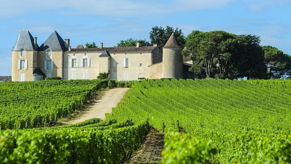 Franska Bordeaux med sina slott, är en av världens mest berömda vinregioner.