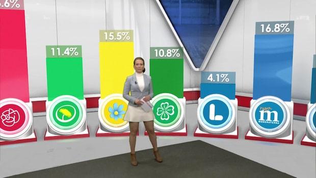 EU-valet 2019: Här är resultatet