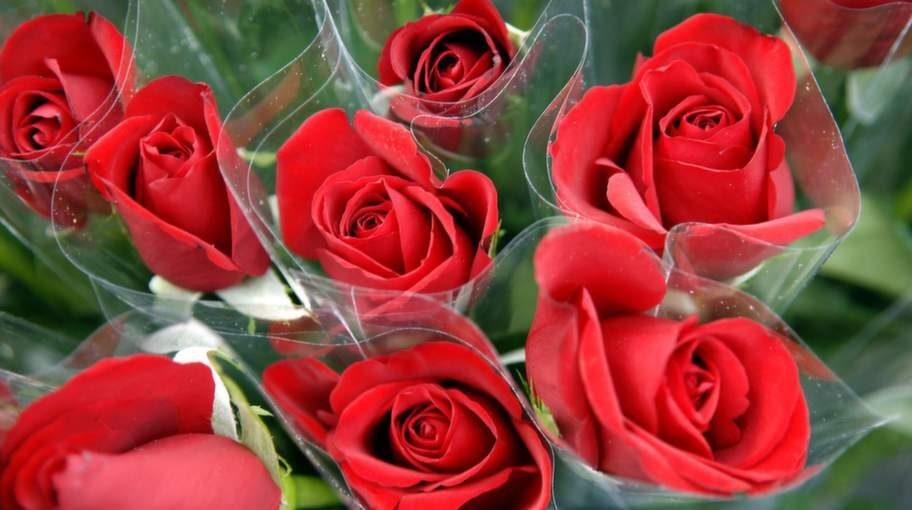 På alla hjärtans dag säljs över fyra miljoner rosor i Sverige.