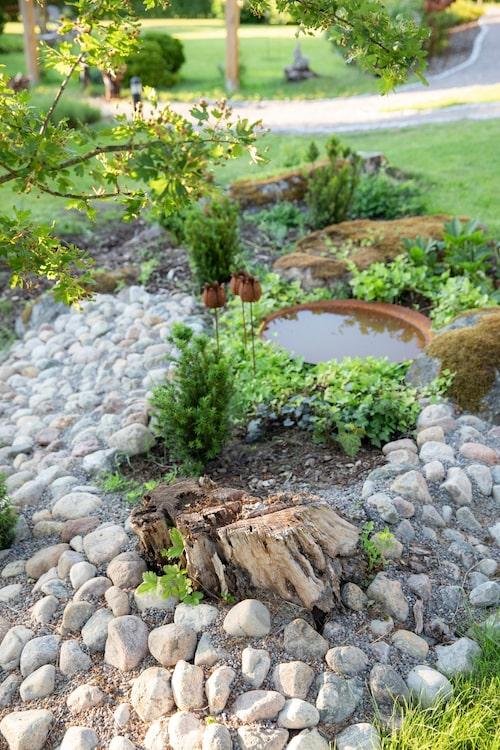 Carins dröm är att kunna arbeta med trädgård och design på heltid.