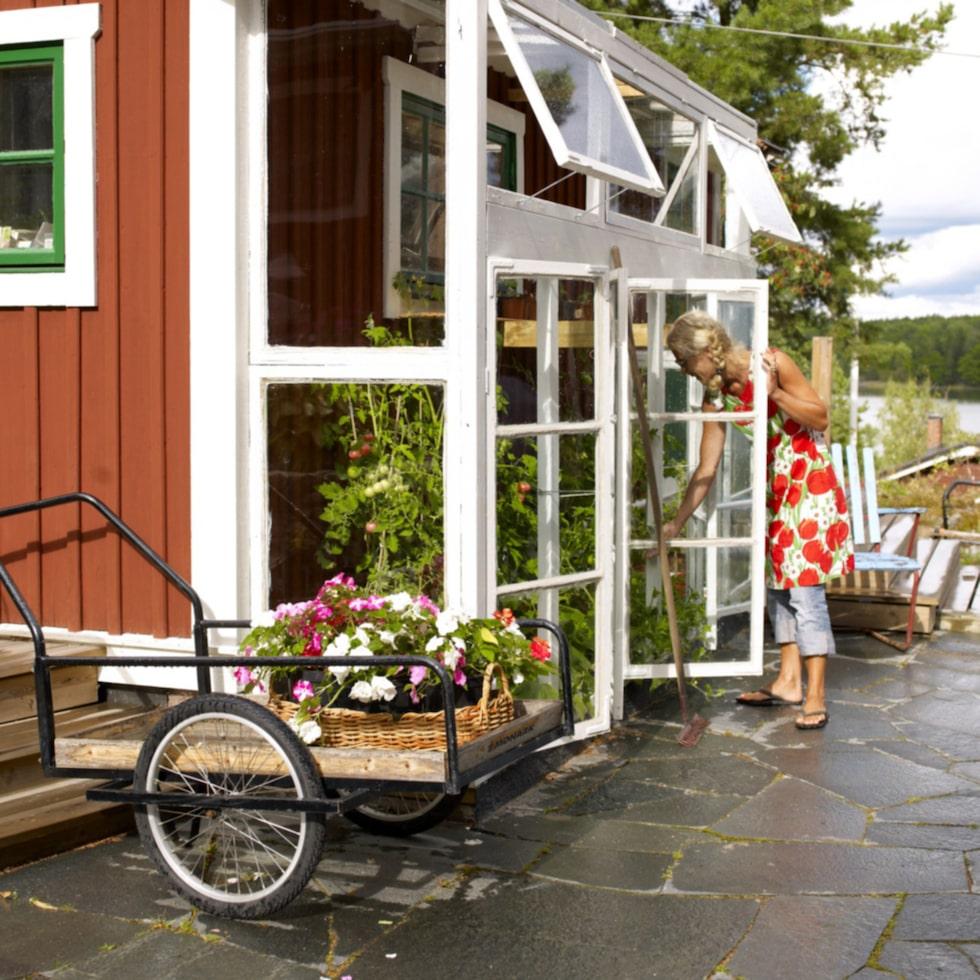 Det här söta lilla växthuset är byggt direkt intill husfasaden. Att ingången finns endast från utsidan gör att man inte behöver riva eller ändra något på själva fasaden. Fönstret på huset blir en trevlig detalj i växthuset och det doftar underbart när man öppnar det inifrån huset.