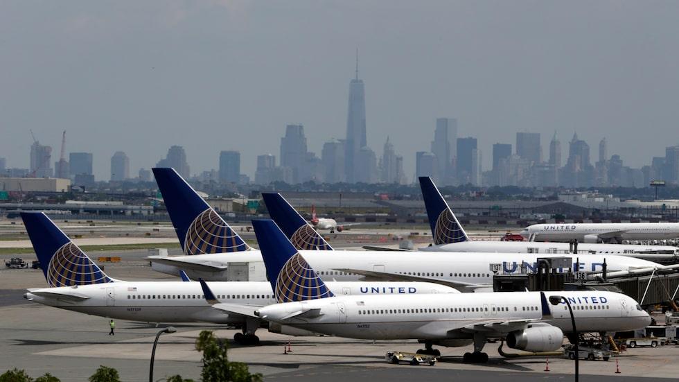 Flygvärdinnan på United Airlines tvingade familjen att stänga in sin hund  i bagageutrymmet ovanför sätena på flygplanet. När de landade hade valpen Kokito dött.