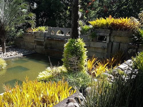 Sítio Roberto Burle Marx i Rio de Janeiro, trädgårdar skapade av den berömda landskapsarkitekten Roberto Burle Marx.