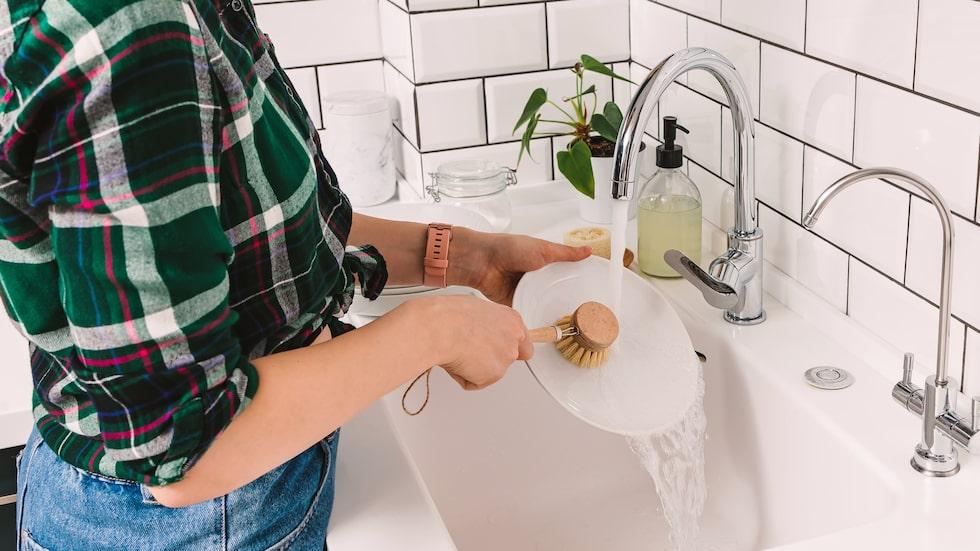 Genom att hålla diskborsten fräsch kan du använda den längre. Här tipsar vi om enkla husmorsknep!