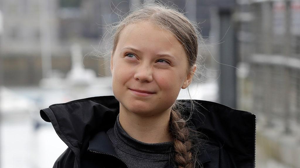 Flygskam och Greta Thunberg-effekten har fått privatpersoner att få upp ögonen för klimatkompensation.