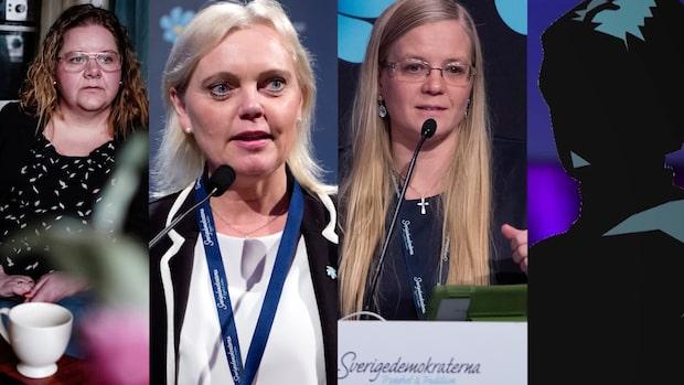 SD-kvinnor i ny bok: Så är det mansdominerande partiet