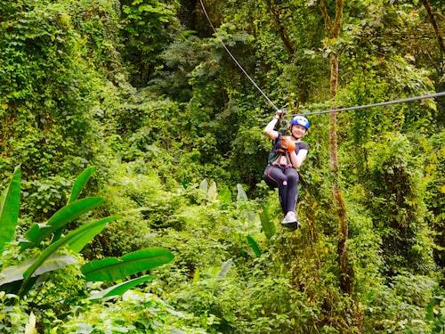Zipline i den lummiga subtropiska regnskogen i äventyrsmeckat La Fortuna.