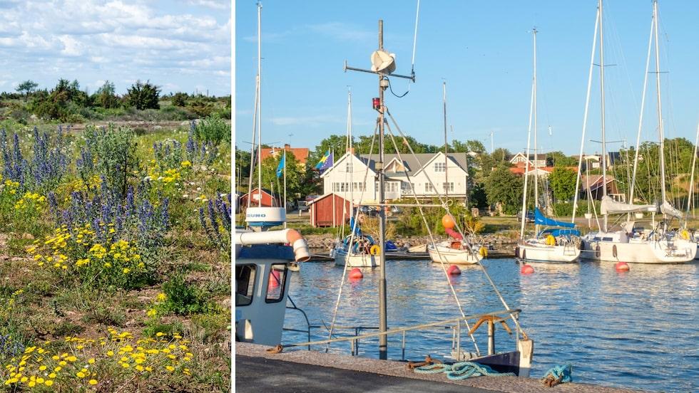 Får det lov att vara en liten roadtrip på Öland i sommar?
