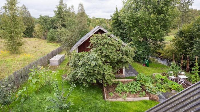 Trädgården är på 1 096 kvadratmeter.