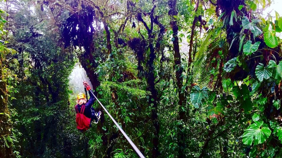 Molnskogen i Monteverde upplevs bäst i sele genom en zipline-tur i Selvaturaområdet.