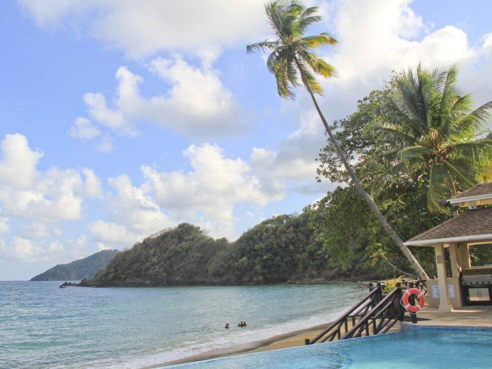 Vackra vyer. Tobago är naturälskarens dröm med grön djungel och fiskrikt hav.På Blue Waters Inn trivs kolibrier och fågelskådare. De förstnämnda har egna matbord utanför hotellrummen.