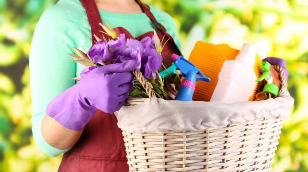 Vårstädning går att göra miljövänligt. Städa utan massor av kemikalier – det finns många naturliga städmedel att ta till.