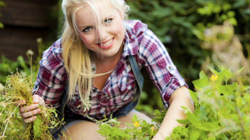 Ogräs i rabatter och trädgård vill vi alla slippa. Här får du enkla 8 tips på hur du bli av med ogräset!