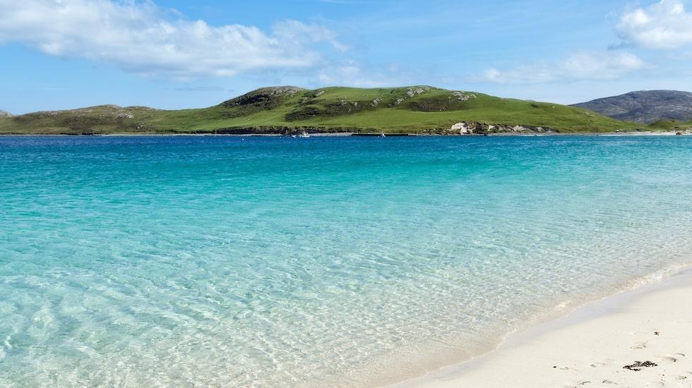 Karibisk känsla i Skottland, här trivs Skytten.