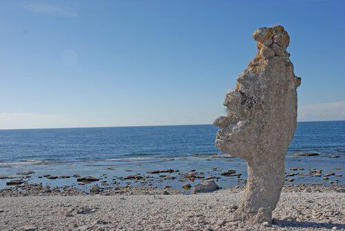 Stenstranden på Fårö, en våt dröm för en Stenbock!