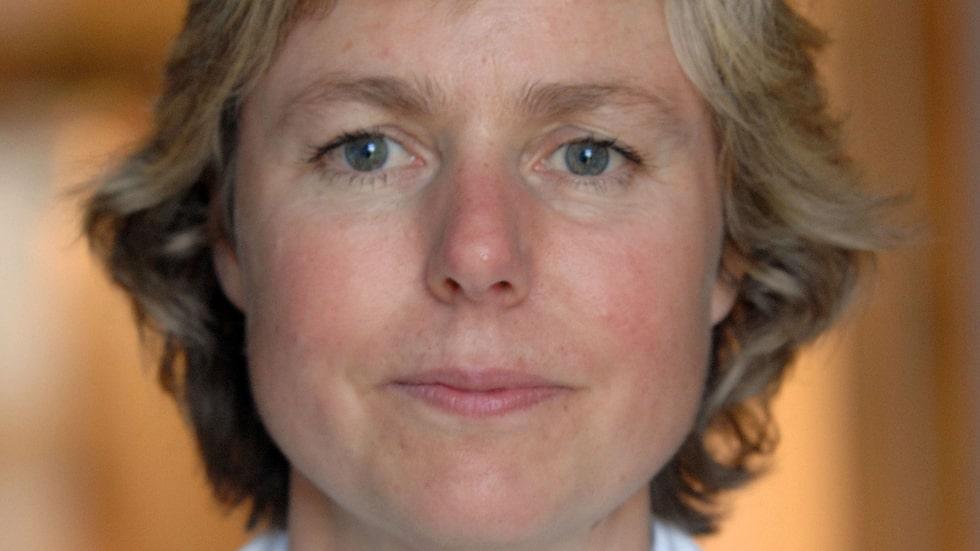 """""""Bönor är absolut bra mat för den som vill gå ner i vikt"""", säger Anne Nilsson, forskare vid Lunds universitet. Hon berättar att bönor innehåller ämnen som sänker graden av inflammation i kroppen."""