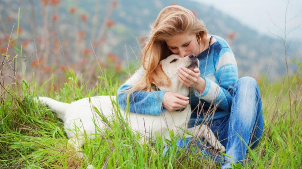 En hund är inte bara glädje och en trogen vän.