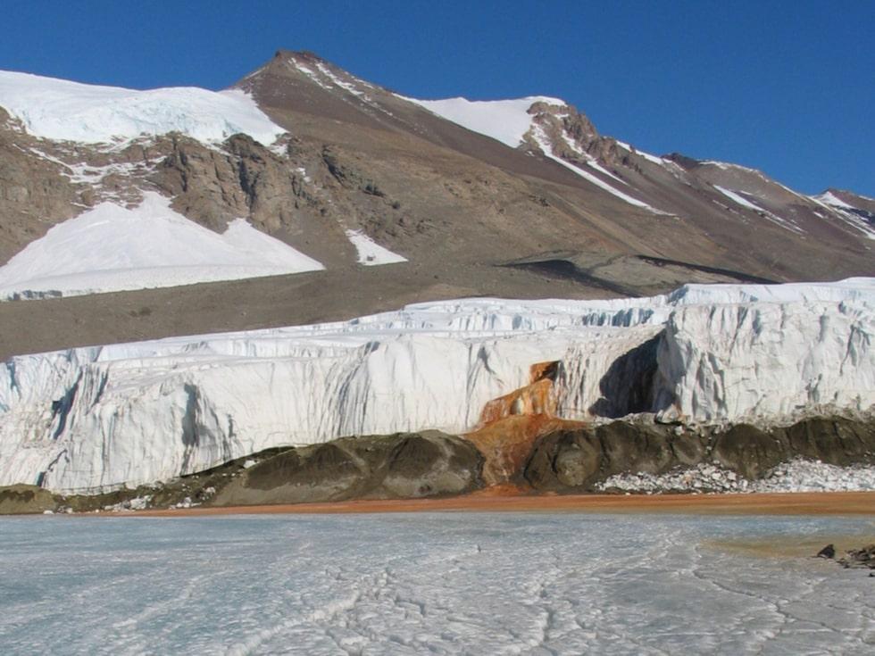 När saltvattnet letar sig igenom små sprickor i isen reagerar det med syre och får sin röda färg.