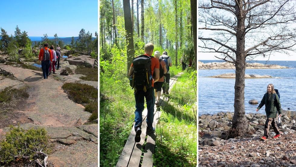 Att vandra längs Sveriges kuster är en upplevelse utöver det vanliga.