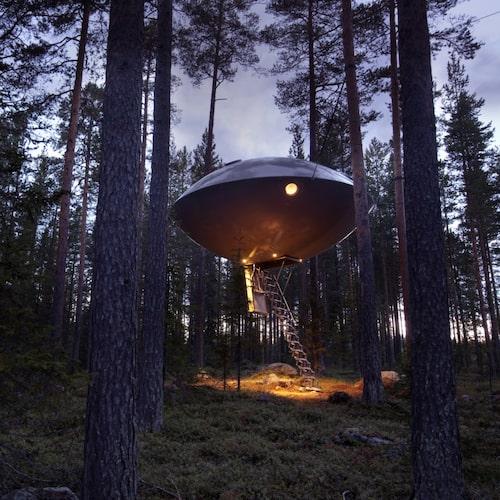 Bor gör man högt uppe i ett träd – varje rum är unikt inrett.
