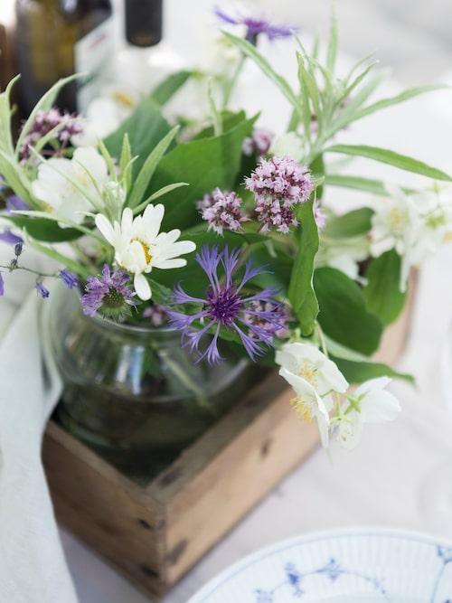 Lina plockar gärna in blommor som exempelvis schersmin, prästkrage och blåklocka från trädgården.