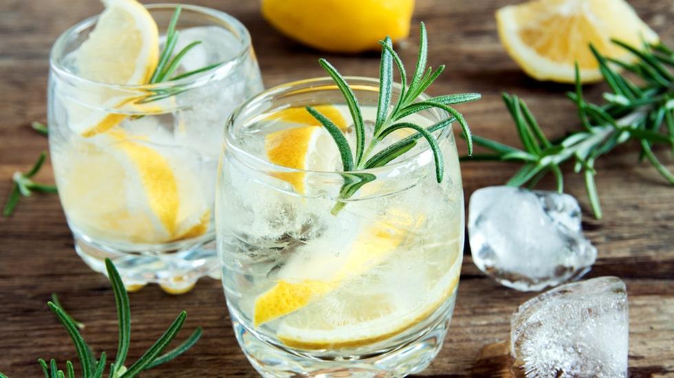 Med få ingredienser är det viktigt att vara uppmärksam på vad du egentligen har i din Gin och Tonic.