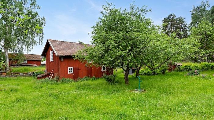På den stora tomten står ett uthus med bland annat snickarbod.