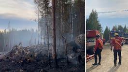 Stor skogsbrand i Ånge – tar dagar att släcka