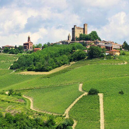 I Le Langhe gör man de världsberömda vinerna Barolo och Barbaresco.