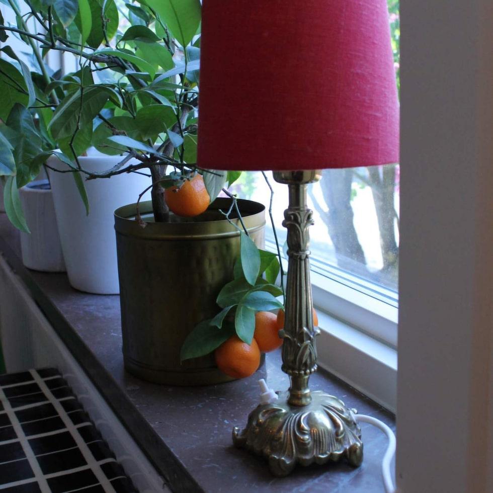 Kolla elsäkerheten! Har du köpt begagnade lampor eller julbelysning bör du se upp. En ny undersökning visar att gamla lampor kan vara livsfarliga.