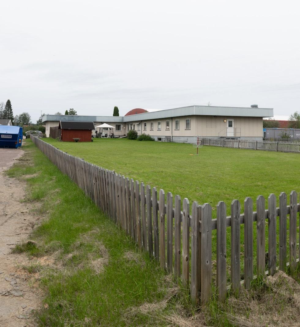 Trädgården på baksidan består av en plan gräsmatta som Caroline Strand och Erik Berglund så småningom vill ta tag i.