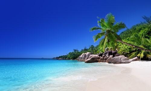 Ön Praslin, Seychellerna.