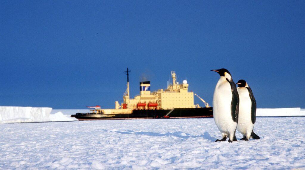 Liksom en sväng förbi Antarktis.
