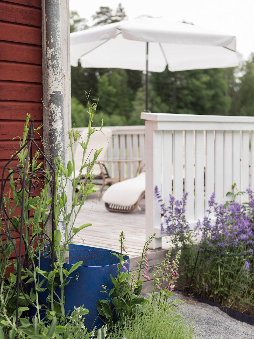 På altanen finns det härliga solsängar som inbjuder till lata sommardagar. Solsängar och dynor, Ellos. Parasoll, Rusta.