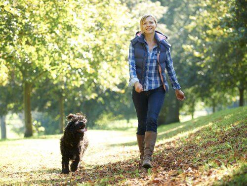 Bättre än en vanlig promenad.